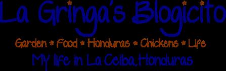 La Gringa's Blogicito