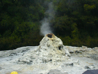 My New Zealand Vacation, Rotorua, Wai-O-Tapu, Lady Knox Geyser, Photo10525