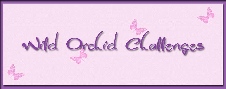 Wild Orchid Challenge