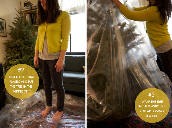 Pro Tip: How To Remove a Christmas Tree without Excessive Vacuuming