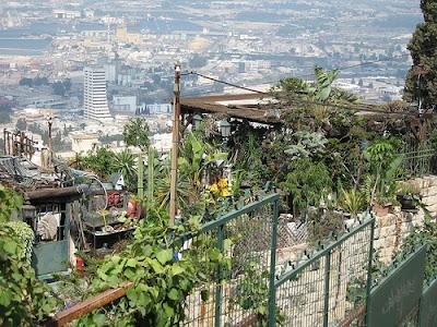 Foto de um jardim doméstico em casa de Haifa