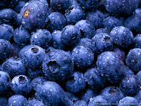 Blueberries: mirtilo, arando ou uva-do-monte.