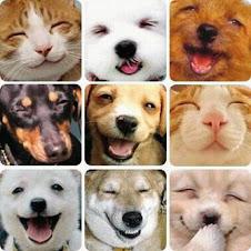 Aquí todos somos felices... naturalmente