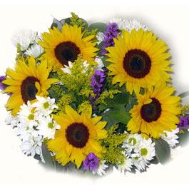 Greeting Cards September Flowers September Flowers Cards