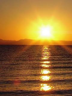 பாரதியின் கவிதைகள் : தெய்வப் பாடல்கள் : ஞாயிறு வணக்கம்
