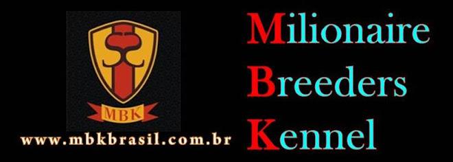 MBK Brasil - Beagle, Schnauzer, Rottweiler - www.mbkbrasil.com.br
