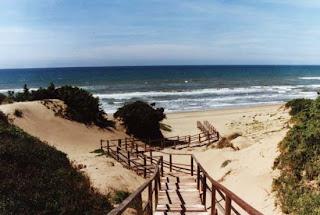 Matrimonio Spiaggia Sabaudia : Girovaga: sabaudia