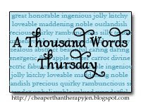 Thousand Words Thursday
