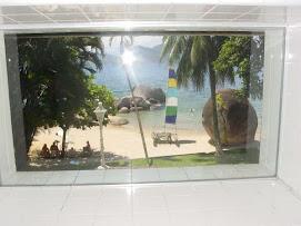Janela da sauna (vista para o mar)
