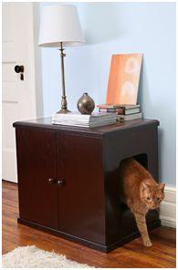 kedi mobilyası