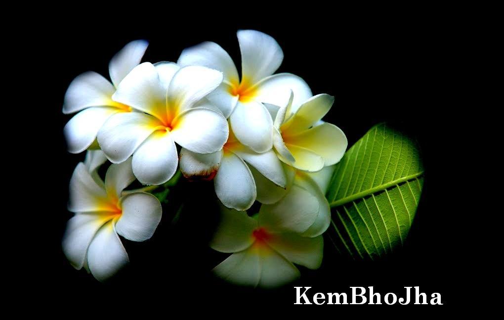 KemBhoJha