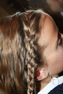 Double-Braid Twistback #3