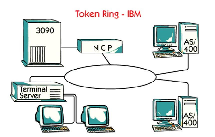 Do Some Networks Use Token Ring
