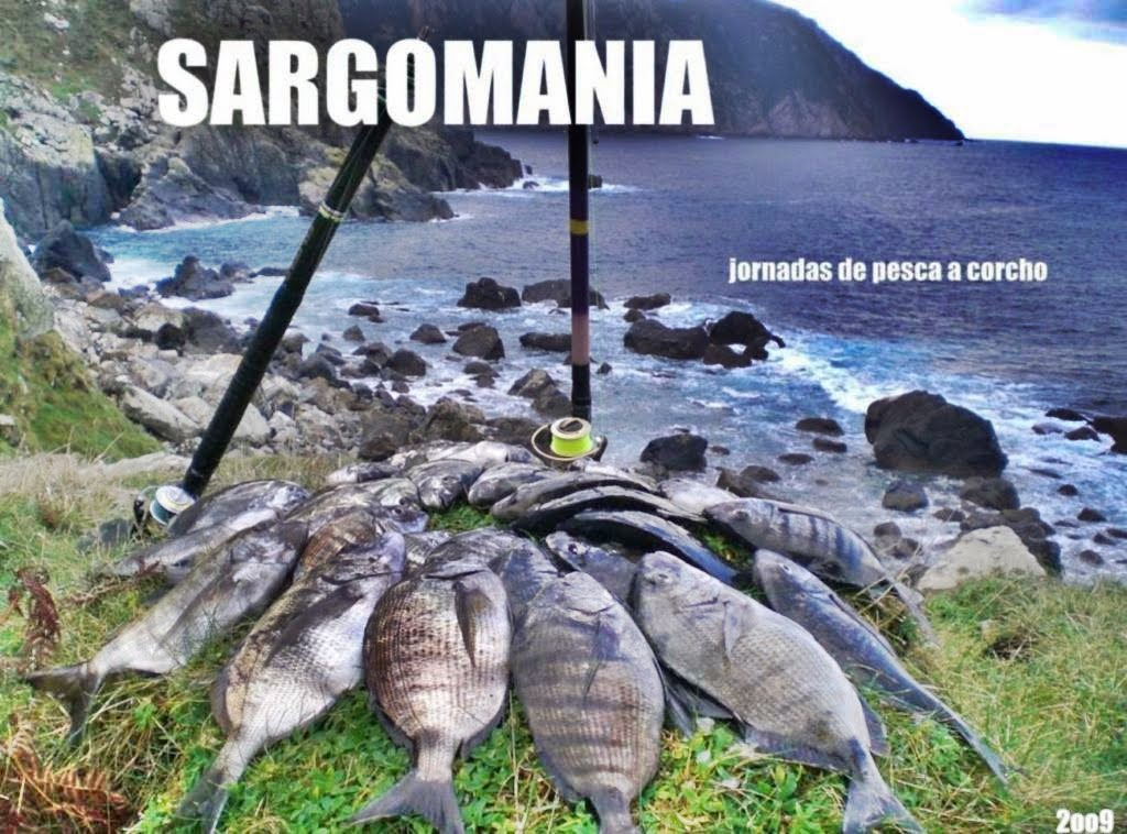Sargomania