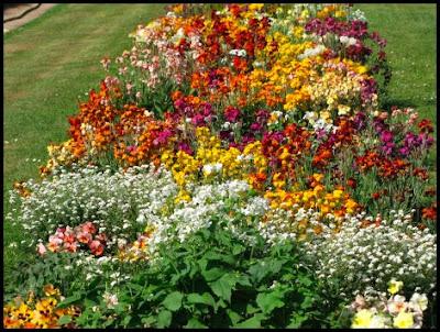 Defining your home garden and travel paris jardin des plantes - Batobus jardin des plantes ...