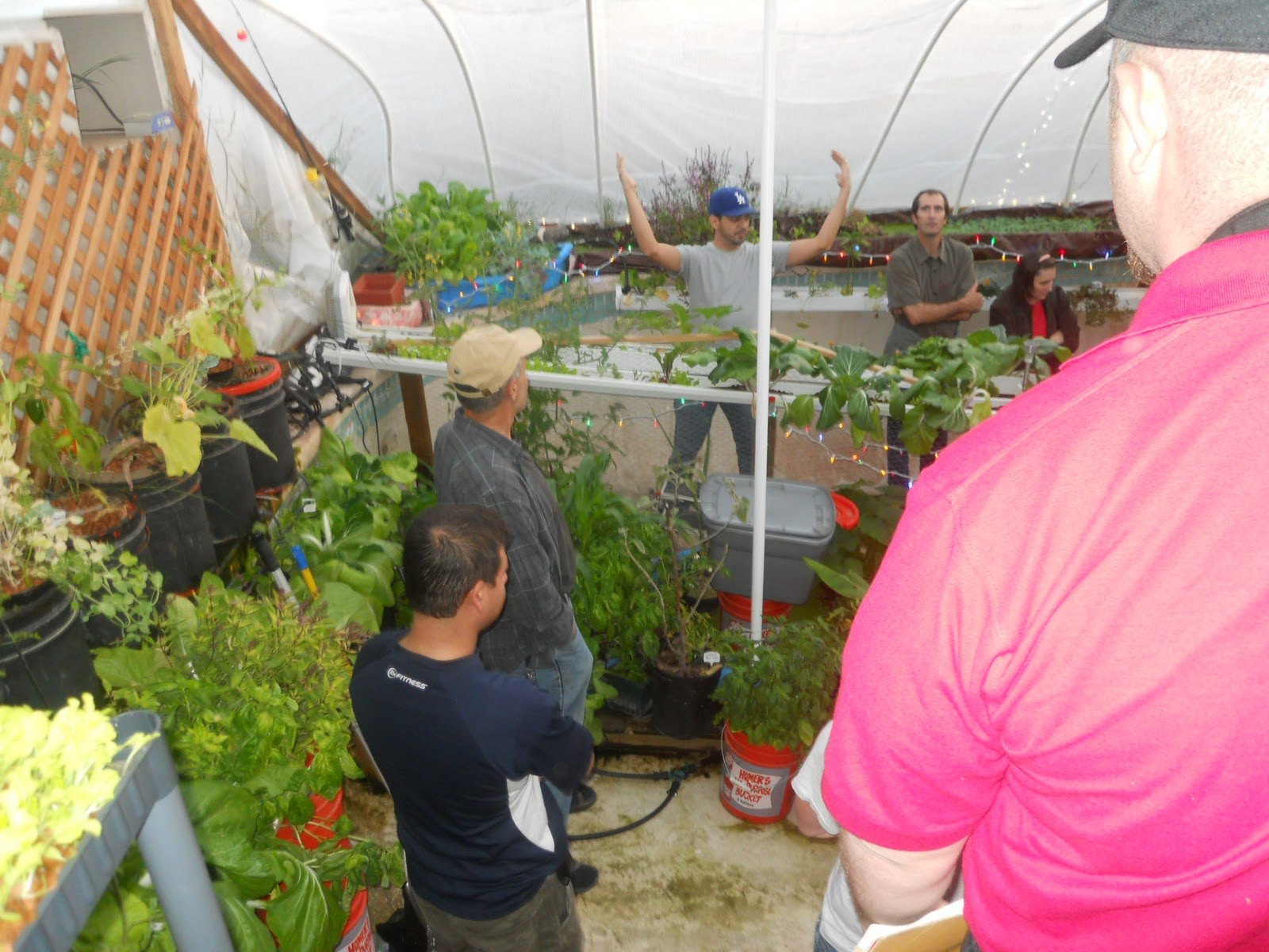 Tending the garden with scott local gardeners convert old for Garden pool aquaponics