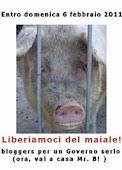 Liberiamoci del maiale