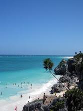Maya coast