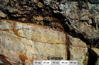 Rocas Sedimentarias Sedim_04