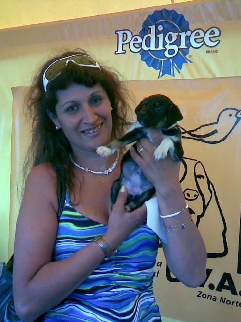 cachorra de 45 dias adoptada