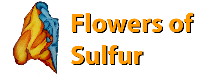 Flowers of Sulfur