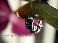 Raindrop sparkles