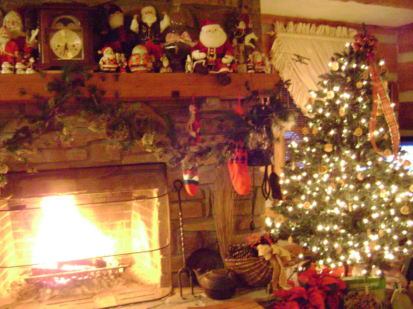 Through My Back Door Tis The Season To Be Joyful