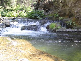 Jon baiocchi fly fishing news fishing report deer creek for Deer creek fishing