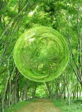 Pensar Verde!