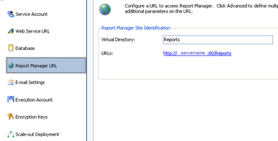 Reporting Services Configuration Manager - Report Manager Url
