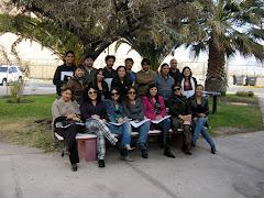 Post Título Terapia Sistémica de Familias y Parejas Antofagasta Tercer año 2012