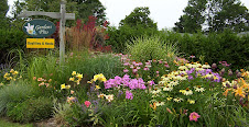 One of the many display gardens