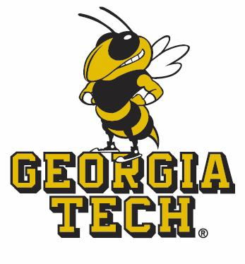 Georgia Tech pool table accessories