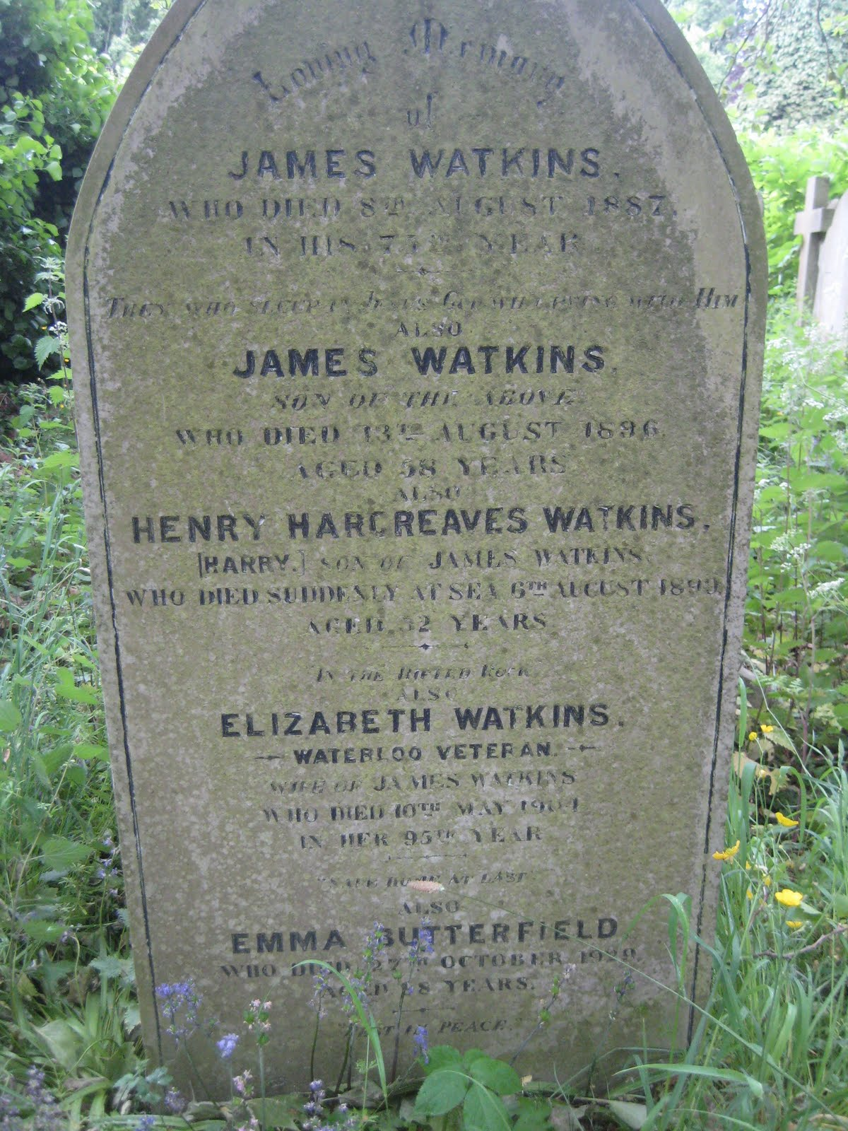 Gravestone of Elizabeth Watkins, Waterloo veteran