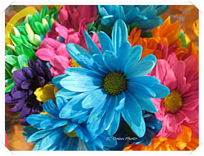 Bouquet Of Flowers. ouquet of flowers at the