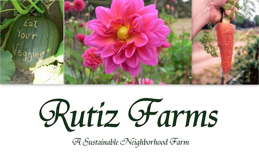 Rutiz Farms
