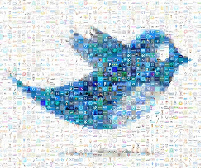 picture of twitter bird and other social networks