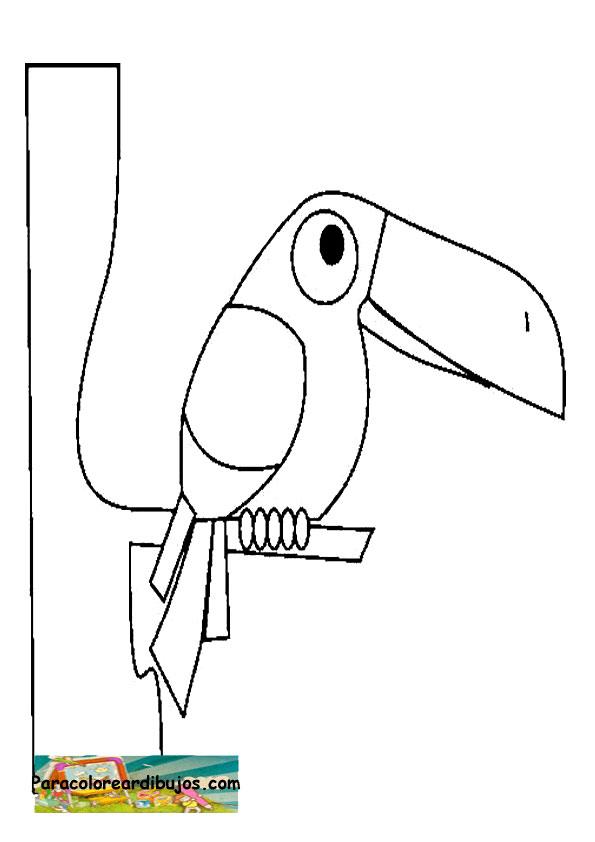 Para colorear dibujo de tucan-Colorear dibujos