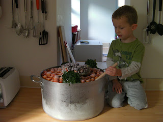 cauldron of frozen tomatoes, making tomato sauce