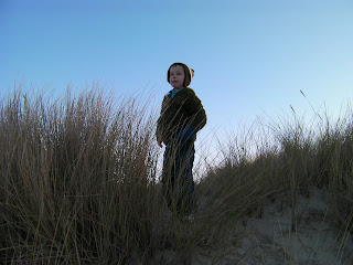sand dunes and marram grass, hayling island