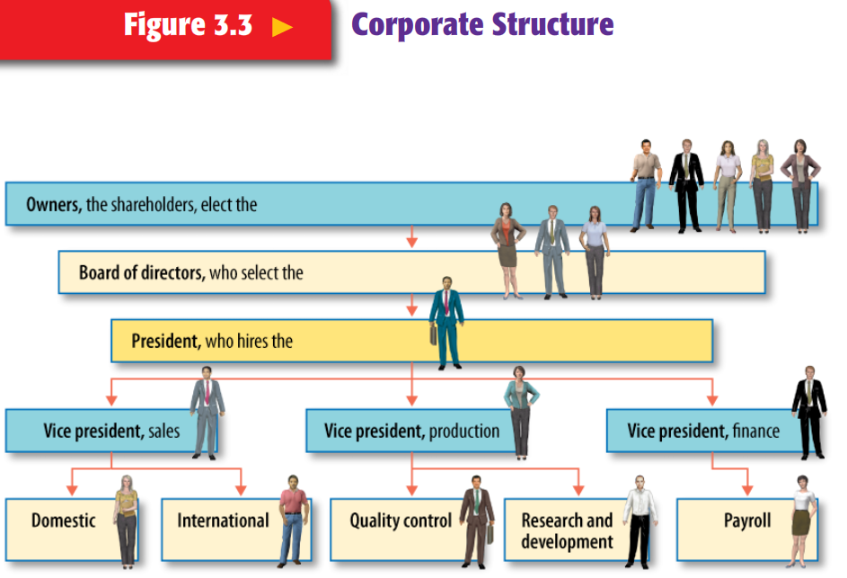 the corporate structure of carrefour Case study carrefour essay sample 1 introduction  absolutely amazing, that's all i can say about the corporate structure of gnc as with any jumping on fads .