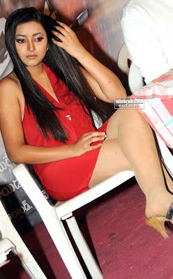 Shweta Basu Hot Pictures  swethaprasad005
