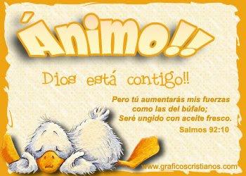 AMIGOS FOREVER Animo
