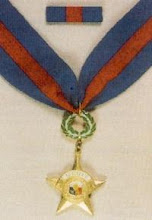 Distinguished Service Star