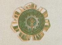 Home Defense Badge