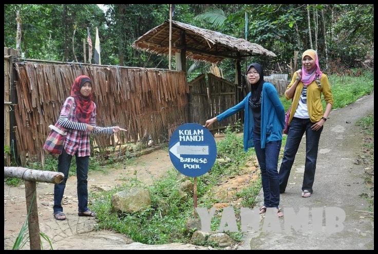 Taiping 2011 Life 101