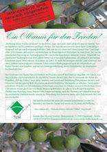 Patenschaft für Olivenbäume
