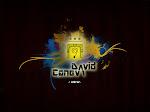 www.davidcaneva.com
