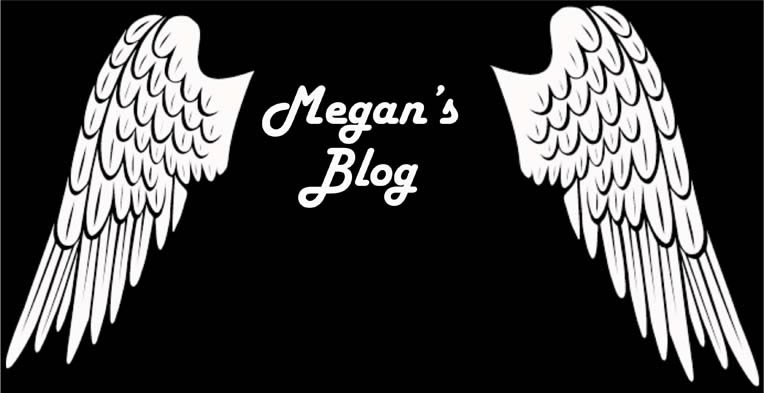 Megan Duffy Media Blog