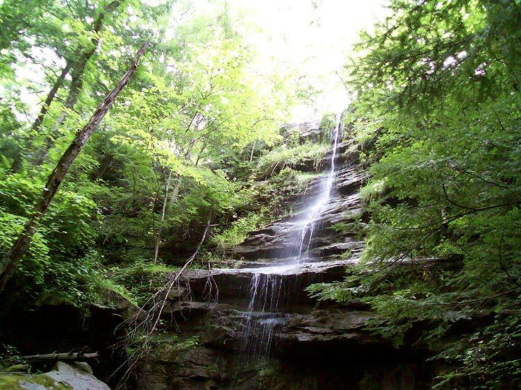 McConnells Mill - Alpha Falls